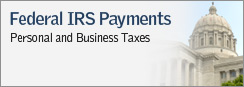 Federal IRS Payments - Personal and Business Taxes